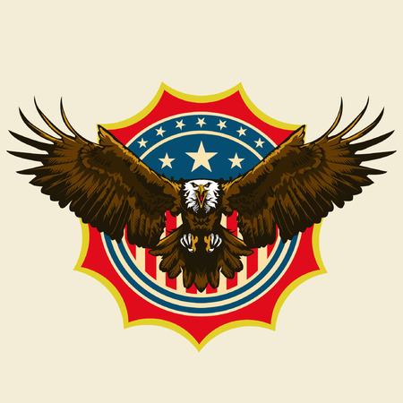 patriotism: American Bald Egle