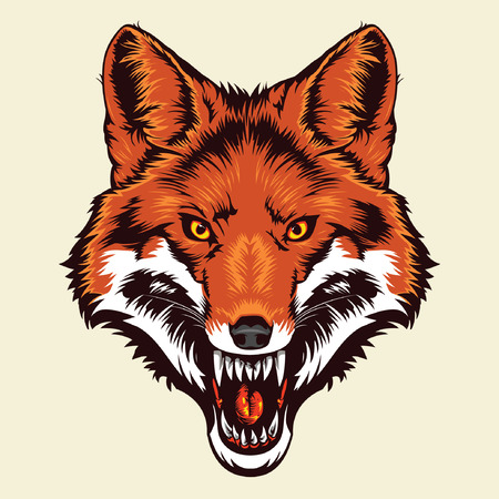 foxes: Angry Fox Head