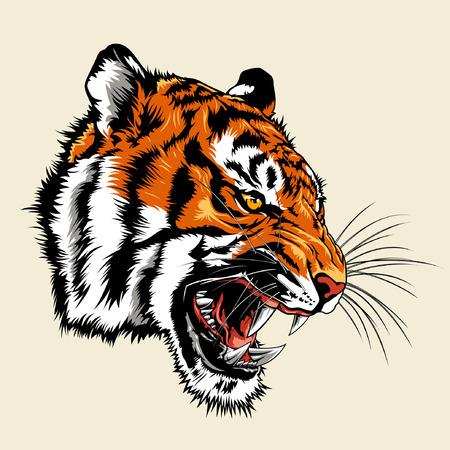 Cabeza de tigre enojado Ilustración de vector