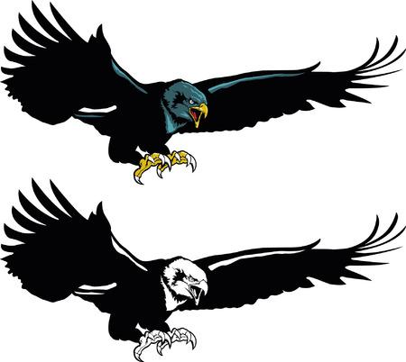 Flying Eagle Mascot Banco de Imagens - 36003382
