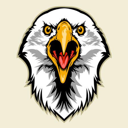 eagle's: eagle head