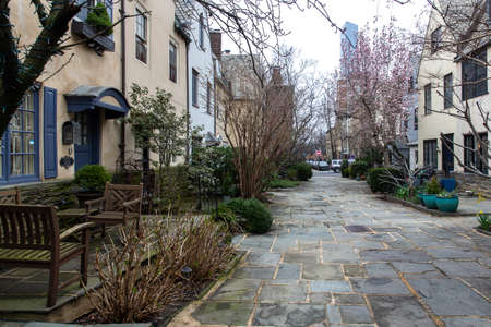 Rows of brownstone apartment buildings in Center City with windows, stoops and planters in Pennsylvania