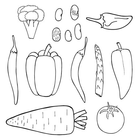 Doodle collection with black outline set of vegetable on white background. Pepper, tomato, broccoli, beans, asparagus, carrot. Organic raw vegan healthy food. Vector line art drawing.