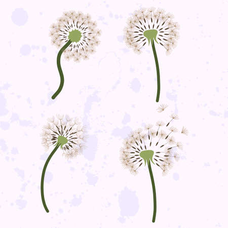 Set of four dandelion with flying seeds. Illustration for greeting card, fabric, paper. Vector template.
