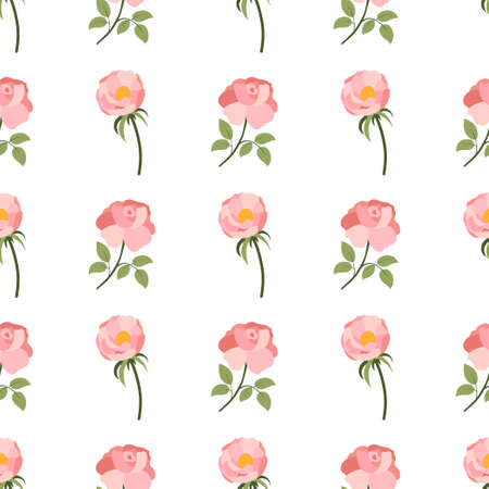 Seamless pattern with pink rose and peony on white background. Floral repeat design. Decorative print. Ilustração