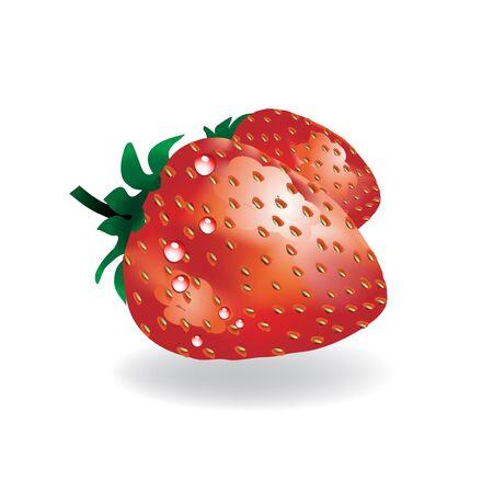 seasoned: Vector strawberry
