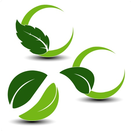 Vector natuurlijke symbolen met blad