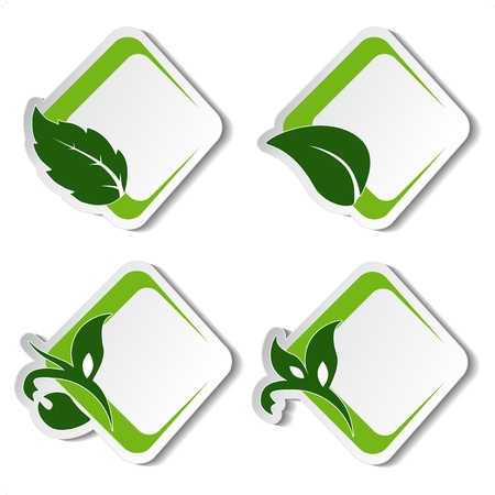 Vector natural stickers with leaf Vector