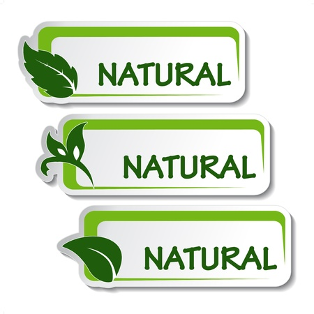 Vector natural stickers with leaf Stock Vector - 11651762