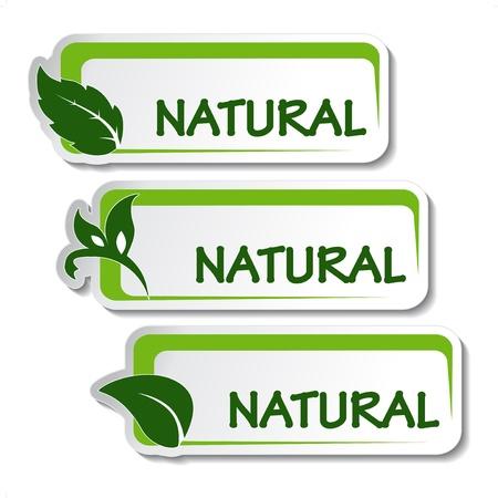 Vector natuurlijke stickers met blad
