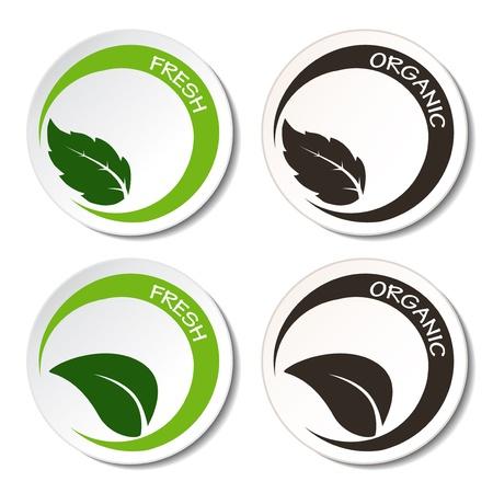 Symboles Vecteur frais et bio avec des feuilles Vecteurs