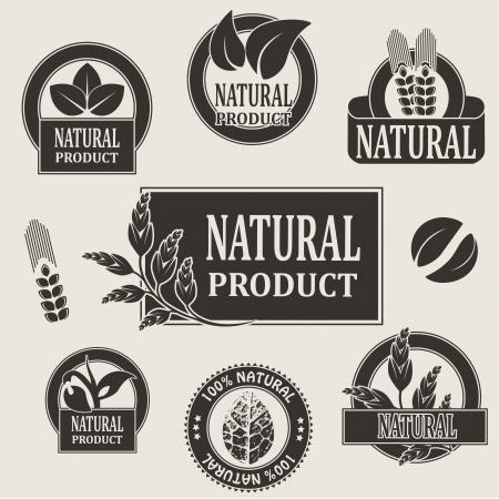 produits céréaliers: symboles de la nature de produit naturel - illustration