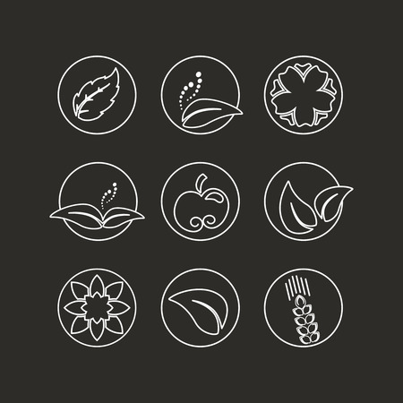 apple leaf: Vector white natural symbols - nature abstract element with leaf, apple, flower and spikelet, bio organic simple design in the circle - illustration