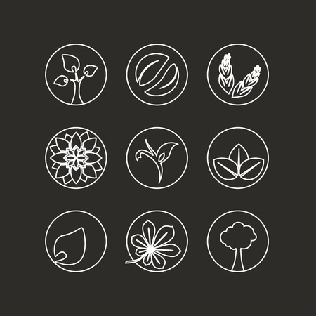 simple purity flowers: Vector white natural symbols - nature abstract element with leaf, tree, flower and spikelet, bio organic simple design in the circle - illustration