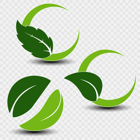 Vector natural symbols with leaf on transparent background. Ilustracja
