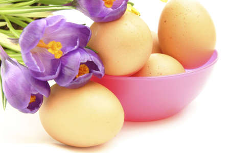 composition of eggs and flowers isolated on white photo