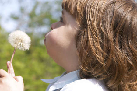 little, cute girl trying to blow a dandelion photo