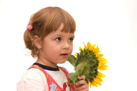 adorable little girl holding big yellow sunflower photo