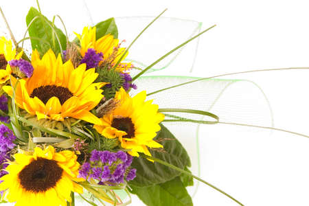 bunch of sunflowers isolated on white background Stock Photo