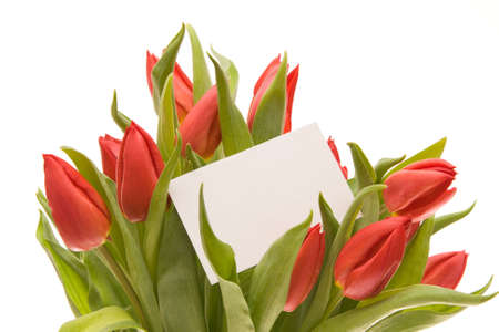 bunch of beautiful red tulips with blank ticket isolated on white photo