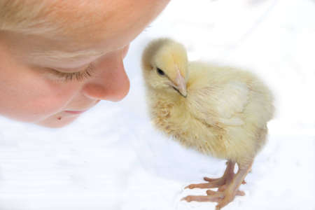 hatched: little boy talking to yellow Easter chick