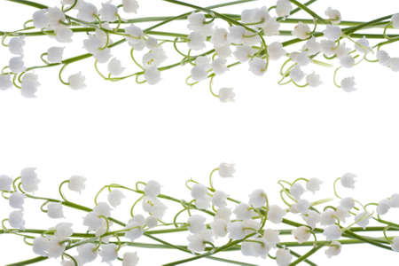beautiful, fresh llies of the valley frame isolated on white Stock Photo
