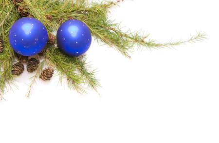green conifer with cones, blue baubles and white copy space photo