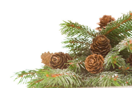 Christmas frame, corner, of conifer and cones