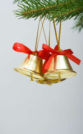 Christmas decoration - little golden bells and spruce photo