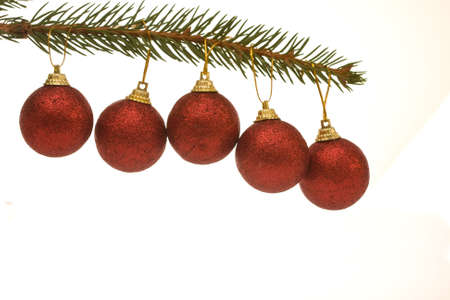 five red Christmas baubles hanging on spruce twig photo