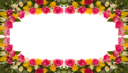 frame of yellow, pink and ivory roses photo