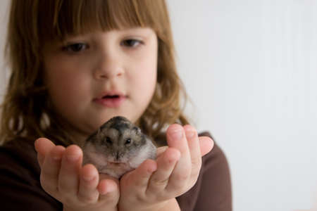 hamsters: cute, beautiful girl with her little hamster