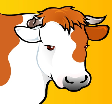 Cow Head in vectors  Vector