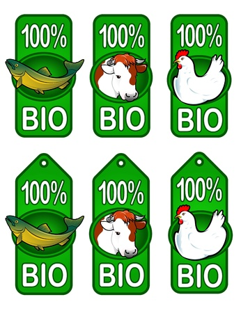 Bio Labels / Fish, Beef, Chicken  Stock Vector - 9674569