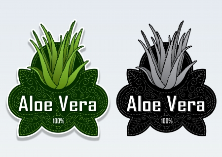 aloe vera plant: Aloe Vera Seal Sticker Illustration