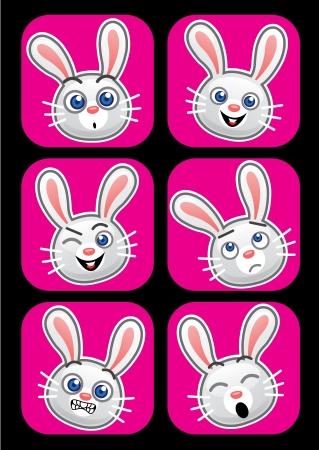 Conejo expresiones faciales