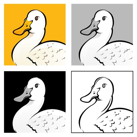 Duck head, 4 variation illustrations Stock Vector - 15328427