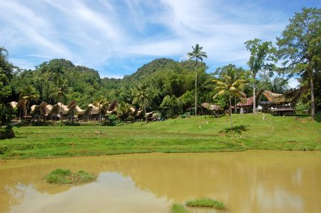 toraja: The village of Kete Kesu ini Toraja, South Sulawesi, Indonesia