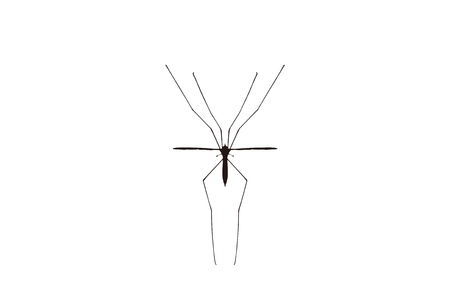 bothersome: The giant mosquito Illustration