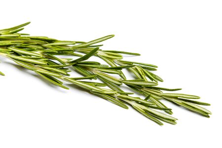 sprig: Fresh green sprig of rosemary isolated on a white background Stock Photo