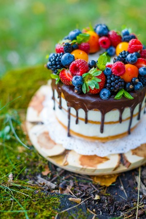 field mint: Summer berry cake on stump with fresh berries