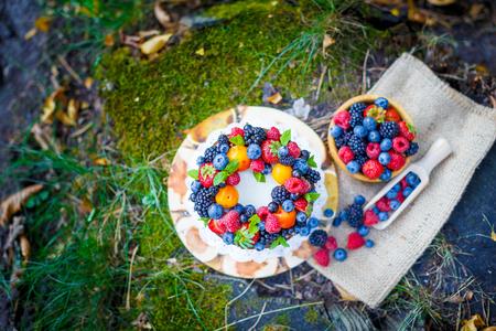 field depth: Summer berry cake on stump with fresh berries