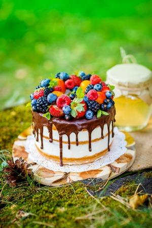 Summer berry cake on stump with fresh berries