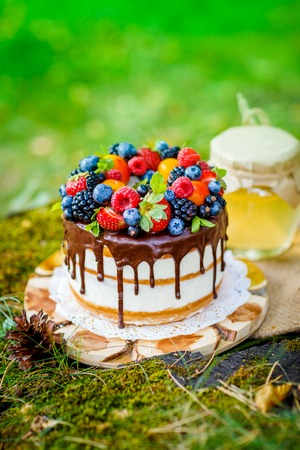 Summer berry cake on stump with fresh berries