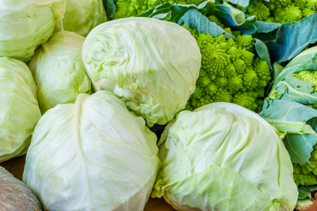 Fresh cabbage on the farmers market Stock Photo