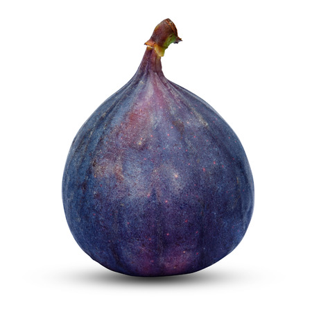 Fig isolated on white background. Clipping path 写真素材