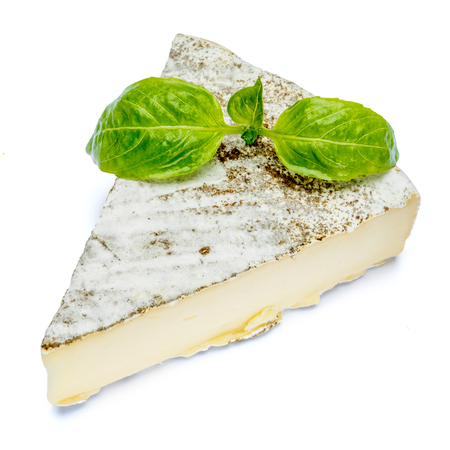 traditional french brie cheese and basil on a white background