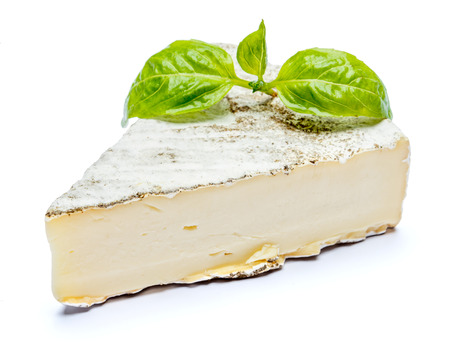 traditional french brie cheese and basil on a white background. Clipping path