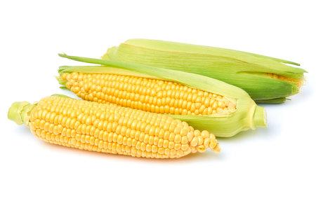 Fresh organic corn cob isolated on white background Archivio Fotografico