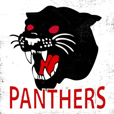 panthers: Panthers typography tshirt graphics vectors Illustration